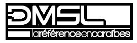DMSL | Levage – Manutention – Convoi Exceptionnel